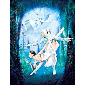 Pressebild quadratisch Dornröschen Ballett